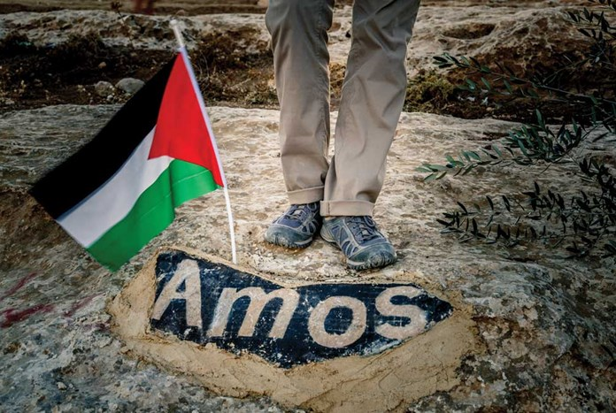 In This Land: Solidarity with Palestine